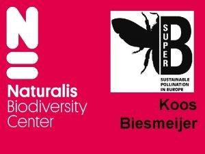 Koos Biesmeijer WHY SUPERB Sustainable Pollination in Europe