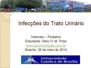 Infeces do Trato Urinrio Internato Pediatria Estudante Hlio