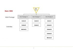 Milestone Basic WBS Work Package XX Work Package