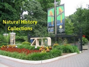 Natural History Collections Types of Natural History Collections