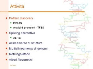 Attivit Pattern discovery Weeder Analisi di promotori TFBS