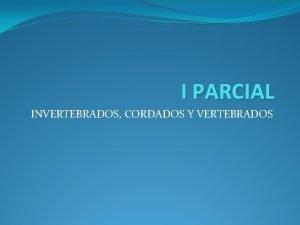 I PARCIAL INVERTEBRADOS CORDADOS Y VERTEBRADOS PHYLUM INVERTEBRADOS