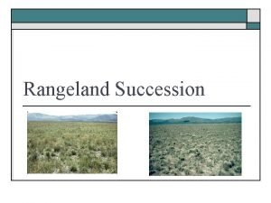 Rangeland Succession Succession o o The orderly change