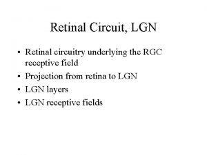 Retinal Circuit LGN Retinal circuitry underlying the RGC