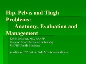 Hip Pelvis and Thigh Problems Anatomy Evaluation and