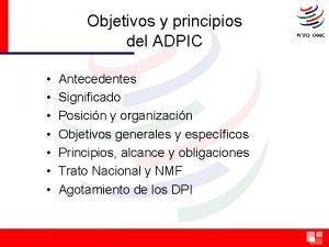 Objetivos y principios del ADPIC Antecedentes Significado Posicin