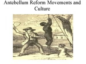Antebellum Reform Movements and Culture Reform Movements Transportation