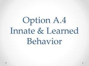 Option A 4 Innate Learned Behavior Innate Behavior