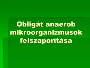 Obligt anaerob mikroorganizmusok felszaportsa Obligt anaerob mikroorganizmusok Obligt