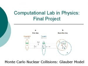 Computational Lab in Physics Final Project Monte Carlo