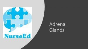 Adrenal Glands Introduction to the Adrenal Glands The