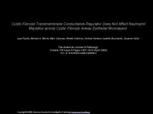 Cystic Fibrosis Transmembrane Conductance Regulator Does Not Affect