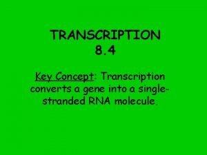 TRANSCRIPTION 8 4 Key Concept Transcription converts a