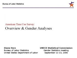 Bureau of Labor Statistics American Time Use Survey