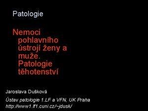 Patologie Nemoci pohlavnho stroj eny a mue Patologie