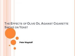 THE EFFECTS OF OLIVE OIL AGAINST CIGARETTE SMOKE