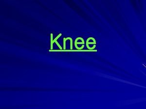 Knee Bones and Joints The knee is the