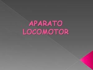 APARATO LOCOMOTOR FUNCIN El aparato locomotor permite al