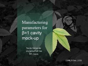 Manufacturing parameters for 1 cavity mockup Nuria Valverde