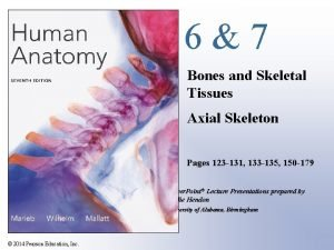67 Bones and Skeletal Tissues Axial Skeleton Pages