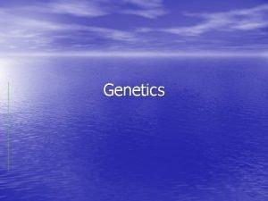 Genetics What is genetics Study of Heredity Traits