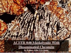 ACFER 040 Maskelynite With Disseminated Chromite B Walker