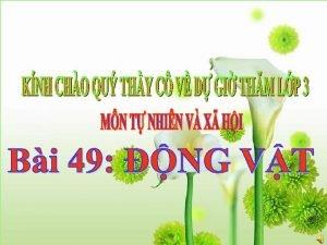 Mi qu thng c my phn THO LUN