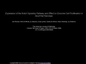 Expression of the Notch Signaling Pathway and Effect