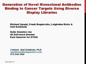 Generation of Novel Monoclonal Antibodies Binding to Cancer