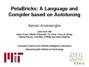 Peta Bricks A Language and Compiler based on