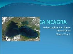 MAREA NEAGRA Proiect realizat de Pascal Ioana Bianca