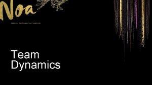 Team Dynamics Team Dynamics Different Perspectives Team Dynamics