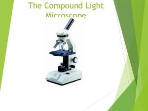 The Compound Light Microscope What is it The