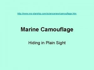 http www msstarship comsciencenewcamouflage htm Marine Camouflage Hiding