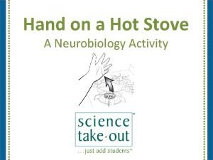 Hand on a Hot Stove A Neurobiology Activity