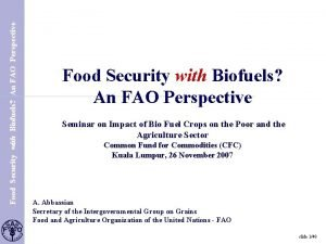 Food Security with Biofuels An FAO Perspective S
