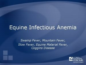 Equine Infectious Anemia Swamp Fever Mountain Fever Slow