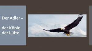 Der Adler der Knig der Lfte Die Bibel