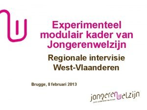 Experimenteel modulair kader van Jongerenwelzijn Regionale intervisie WestVlaanderen