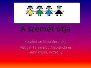 A szemt tja Ksztette Sima Veronika Magyar Tannyelv