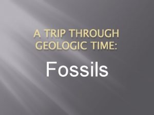 A TRIP THROUGH GEOLOGIC TIME Fossils Fossils are