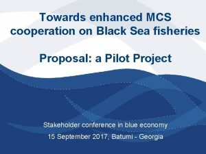 Towards enhanced MCS cooperation on Black Sea fisheries