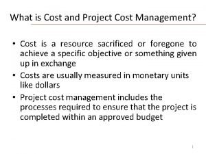 What is Cost and Project Cost Management Cost