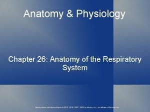 Anatomy Physiology Chapter 26 Anatomy of the Respiratory