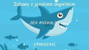 Zabawy z jzykiem angielskim SEA ANIMALS STARSZAKI SEA