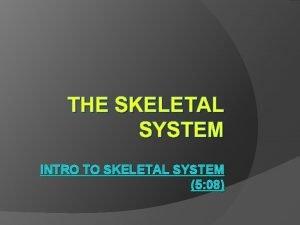 THE SKELETAL SYSTEM INTRO TO SKELETAL SYSTEM 5