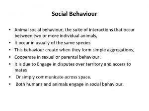Social Behaviour Animal social behaviour the suite of