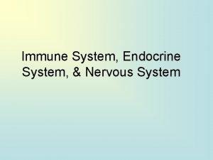 Immune System Endocrine System Nervous System 1 What