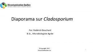 Diaporama sur Cladosporium Par Rodrick Bouchard B Sc