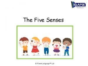 The Five Senses Power Language Ltd The Five
